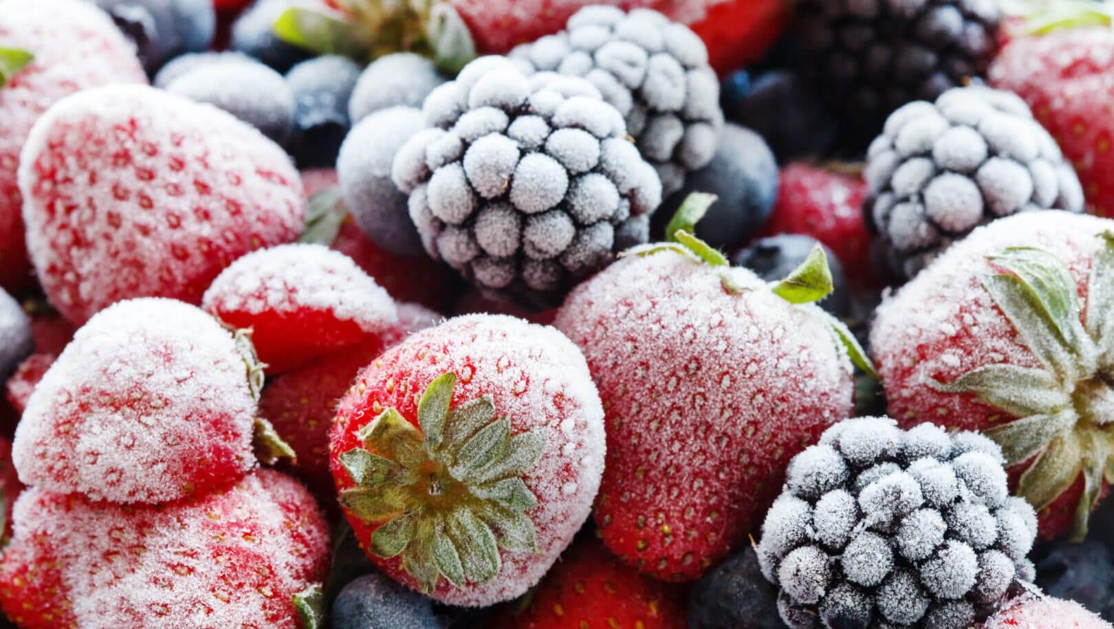 attrezzature refrigerazione alimenti